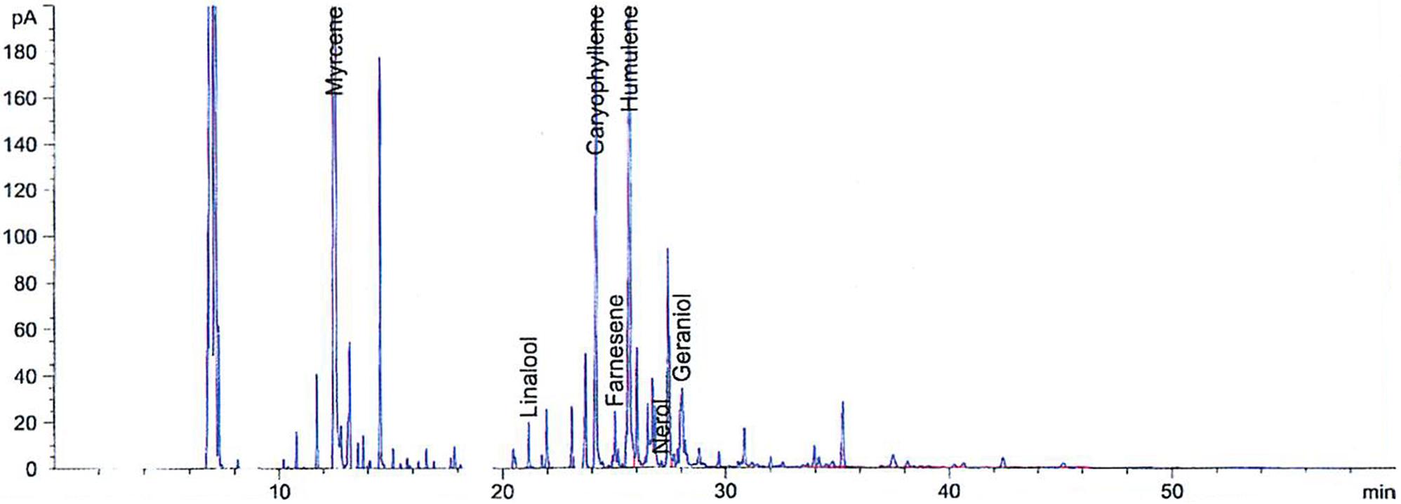 ADHA 527 Graph