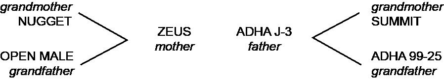 ADHA 527 Parentage