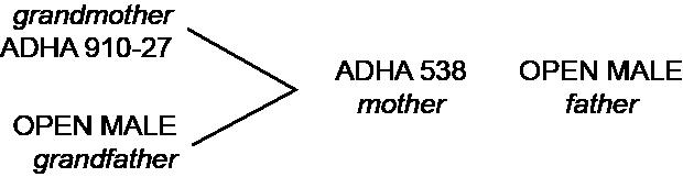 ADHA Pekko® Parentage